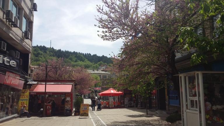 Błagojewgrad centrum miasta