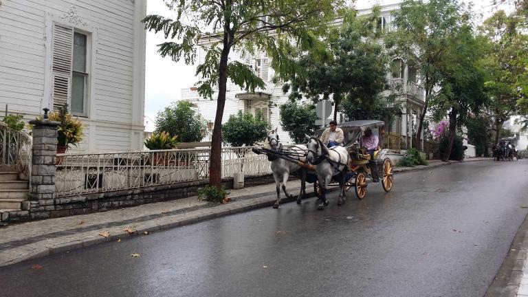 dorożki konne na Büyükada